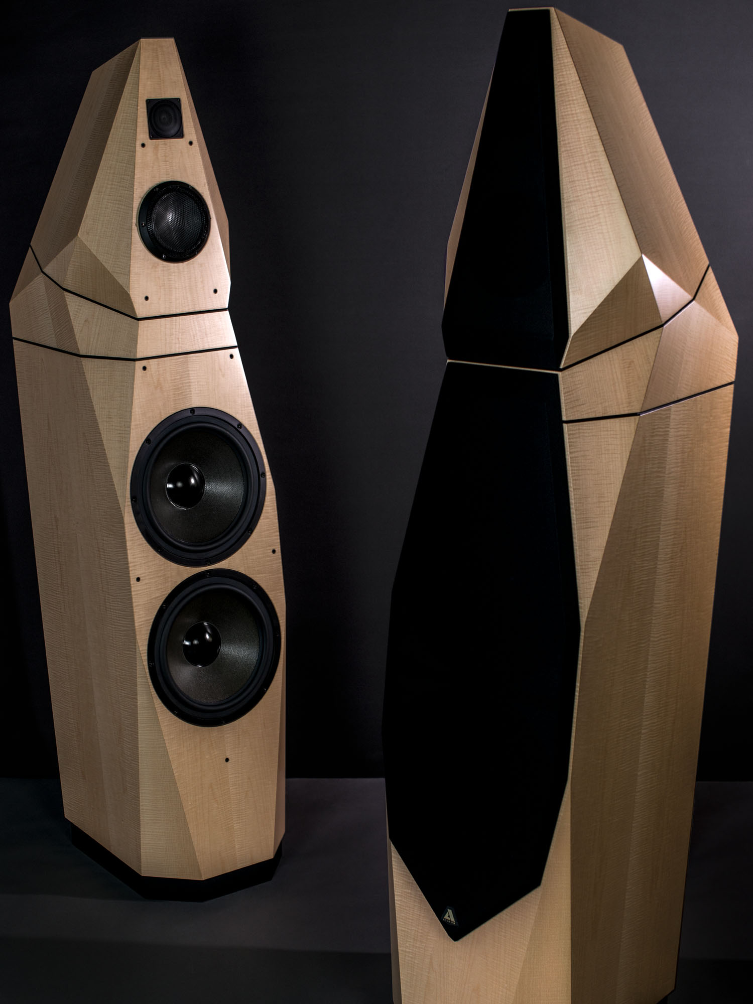 Avalon Acoustics Saga